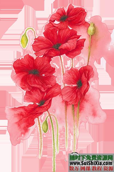 76张漂亮的【水彩花素材】免抠PNG格式